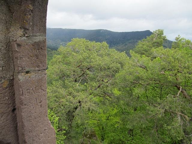 Vue depuis le donjon du château du Bilstein