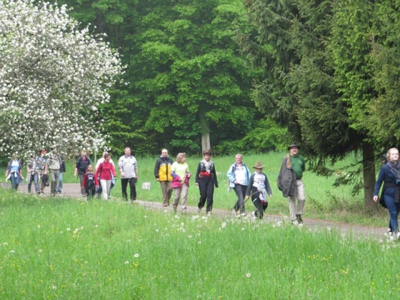 Les marcheurs arrivent au Geisweg