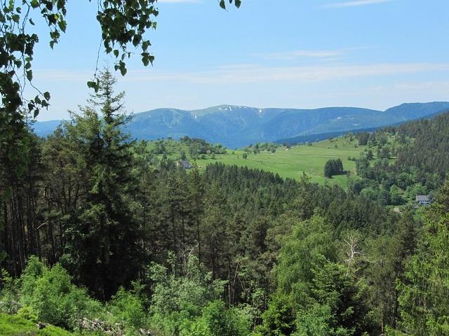 Visite - Vue depuis le Champ de bataille du Linge