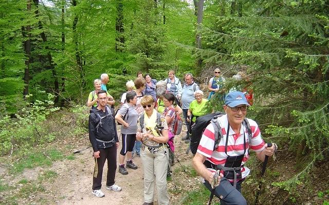 De Stambach vers le Brotsch
