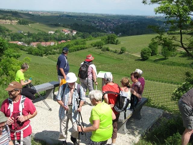 Réservoir de Soultz-les-Bains - Vue sur Wolxheim