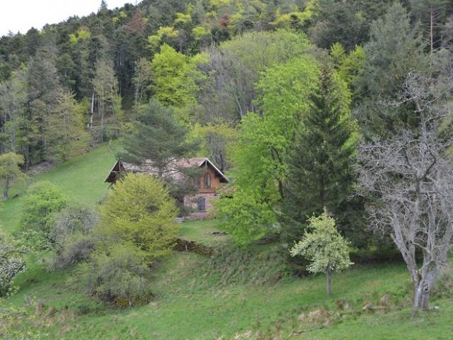 Baerenhütte