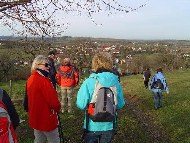 Fuchsberg - Descente vers Cosswiller